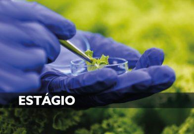 Vaga de Estágio: Ciências Biológicas / Farmácia ou Biomedicina